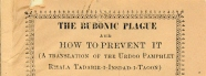 Cover of The Bubonic Plague and how to prevent it pamphlet
