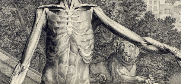 detail of a figure displaying the surface musculature of the front of the bodystands akimbo in front of a landscape of plants, and a stone wall and lion statue