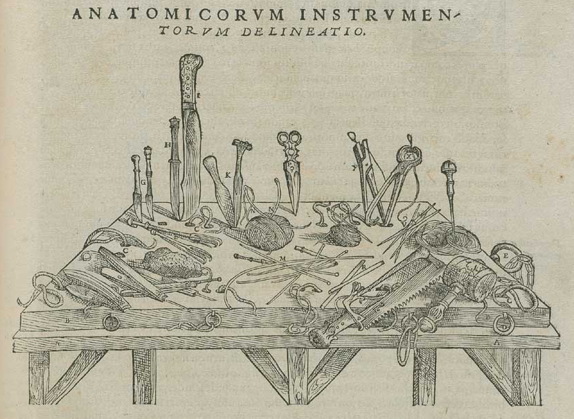 Andreas Vesalius and De Fabrica – Circulating Now from NLM