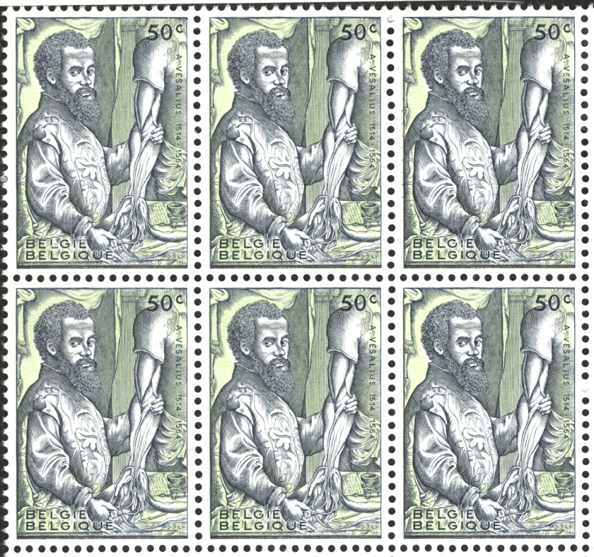 A sheet of nine identical stamps featuring a reproduction of the portrait of Vesalius from his De Fabrca.