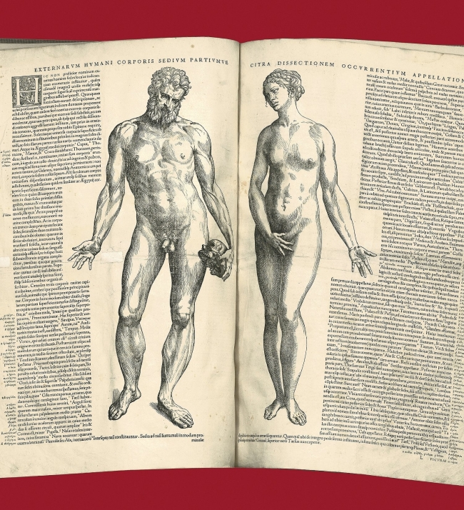 An open book showing two woodcut illustrations of a nude man and woman.