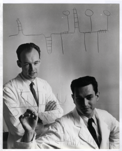 Two men in lab coats pose as one of them writes on a piece of glass.