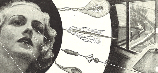 A glamourous woman's face linked to sensory stimulations by drawings of biological receptors.