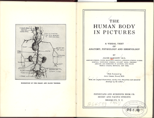Title page of The Human Body In Pictures and a labeled illustration of a Dissection of the Heart and Blood Vessels