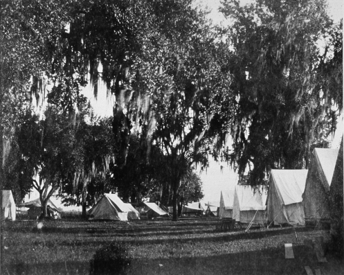 A row of white tents stand in a grove of Spanish moss covered trees.