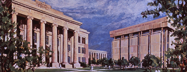 A color illustration of the courtyard between The Harvard Medical School and the Countway Medical Library.