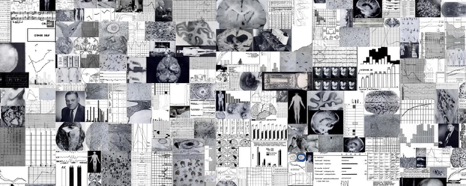 A collage of many black and white images consisting mainly of brain anatomy and graphs.