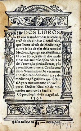 A title page for Dos Libros, 1565 with architectural decorations of columns, base and lintel.