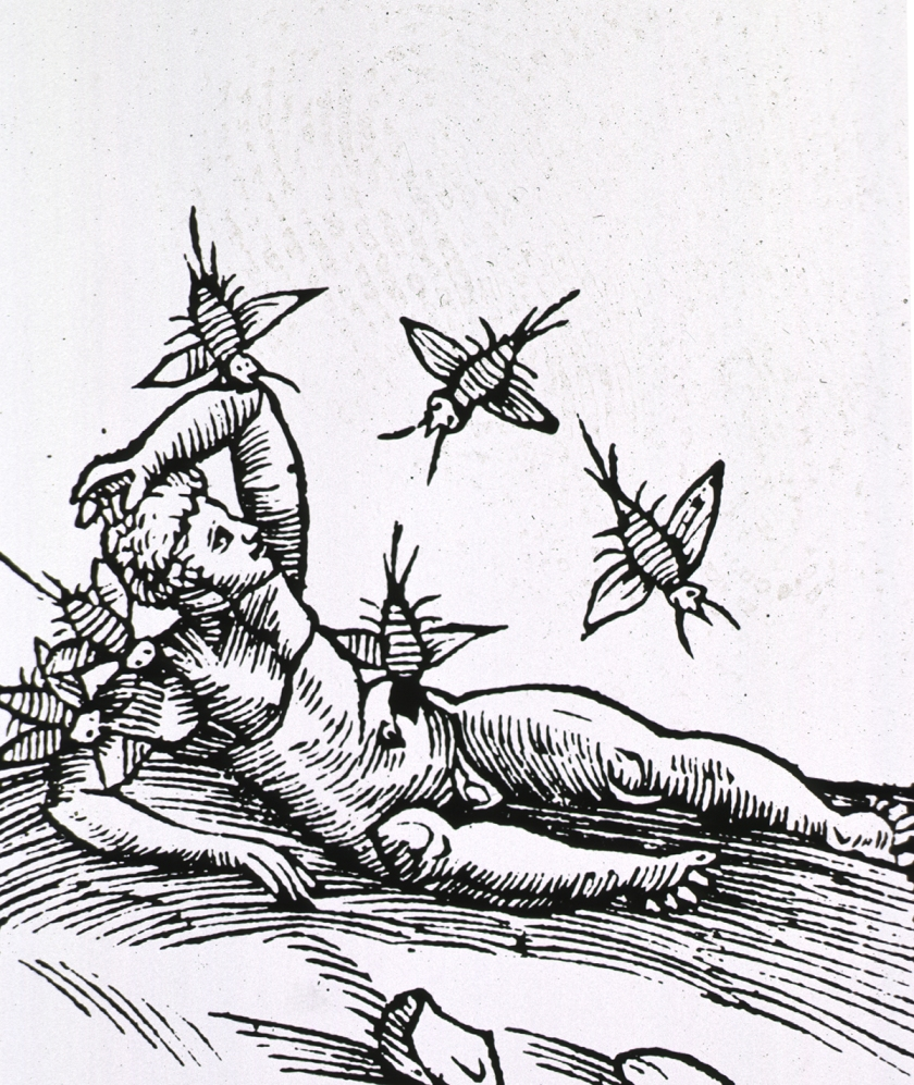 Man being attacked by insects.