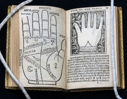 An open book with a full page palm diagram labeled in German on the right and a smaller, more ornate but unlabled palm illustration on the left.