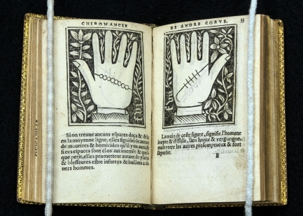 An open book with woodcut illustrations of lines accross the left and right palms.