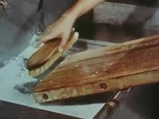 Still frame of a wooden cutting board being scrubbed with a brush in soapy water.