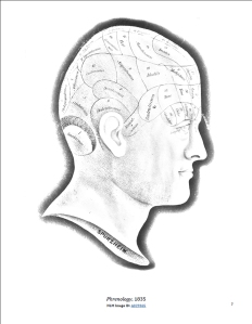 Profile of Franz Joseph Gall showing phrenological sections of the human head.