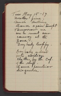 Dr. Blankenhorn diary page for May 15, 1917.