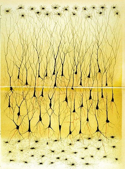 Black orderly treelike networks arranged virtically within the page on a yellow background.