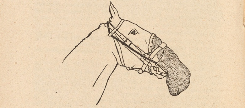 Line drawing of a horse with a gas mask on.