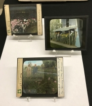 Three labeled glass slides of gardens and flowers.