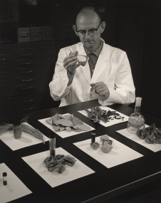 Laboratory technician in white lab coat working with various unidentifiable samples.