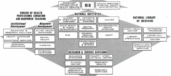 An organizational chart for NIH showing NLM alongside the institutes and an Education Bureau with 5 internal divisions.