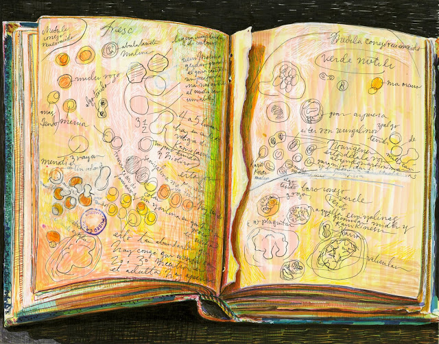 Drawing of an open sketchbook with a page torn out on a dark background displaying sketches of round cell like structures and annotations.