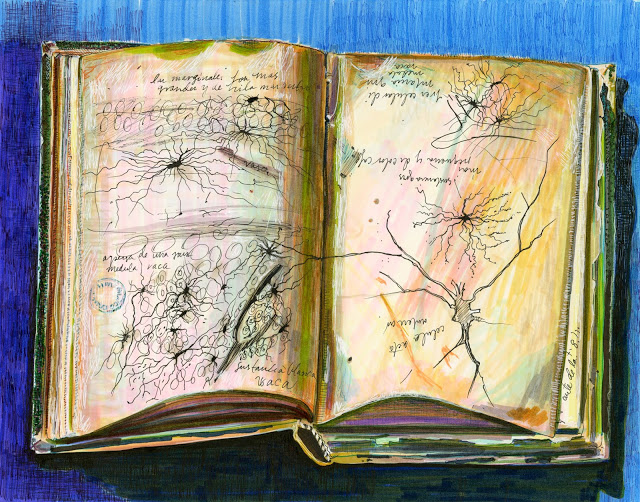 Drawing of an open sketchbook on a colorful background, the sketches are of spiderlike networked structures in black ink.