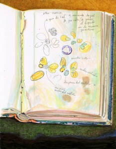 A drawing of a sketchbook on a colorful background, the page has butterfly like shapes,