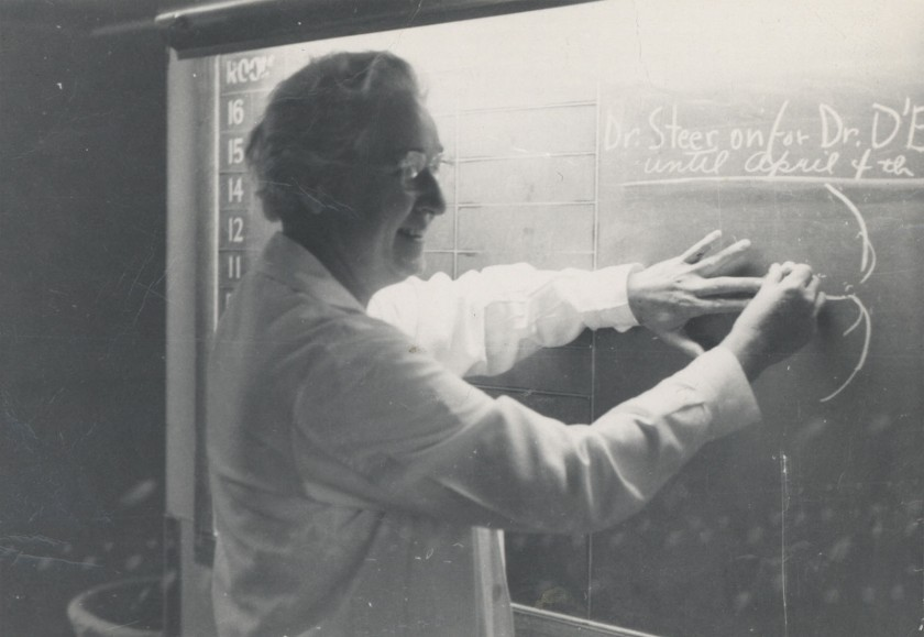 A candid snapshot of Apgar illustrating a point at a chalkboard.