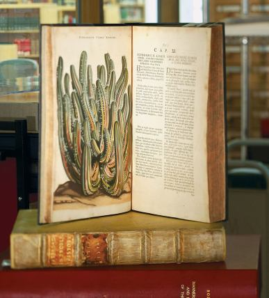 Two volumes of a large book, one open to display a stunning illustration of a cactus.
