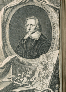 A frontispiece drawing of a very botanical looking human circulatory system, on a table with books, vines, and an Asclepius staff [with snake curled around], propped up against a portrait of William Harvey.